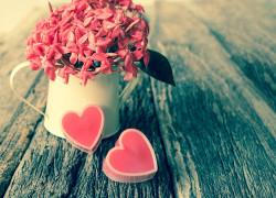 kvetina-laska